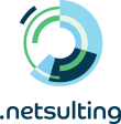 NETSULTING